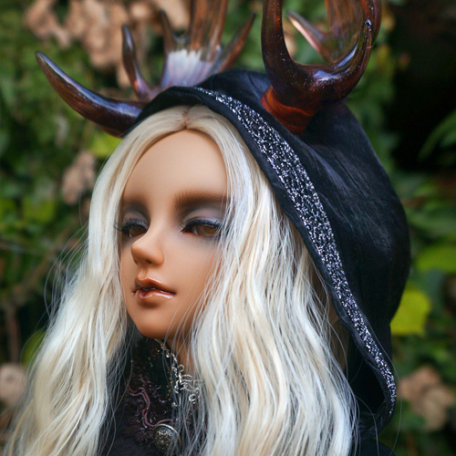 Senior65 Delf STORM the ruler of forest ver. MOONLIT SONG Limted
