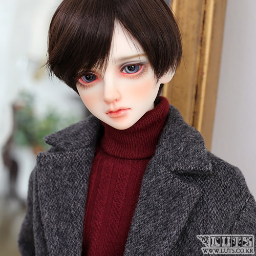 SDF65 Gray-dark Coat