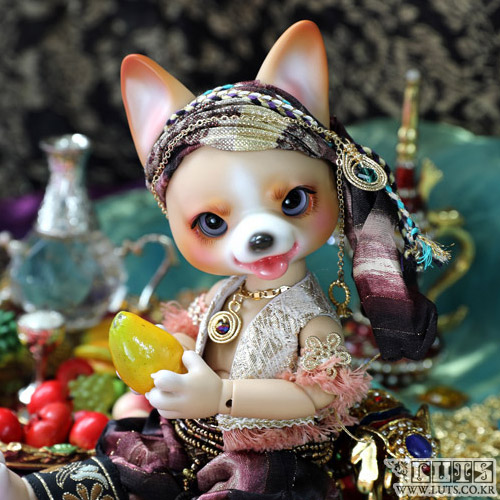 Zuzu Delf CORGI - SPIRIT OF RING Limited