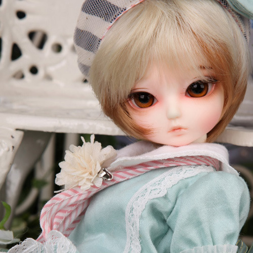 Honey Delf SCONE PRINCE- LITTLE PRINCE