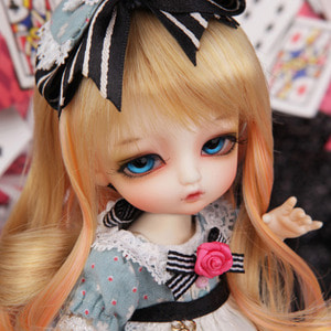 Tiny Delf ALICE - ALICE Limited