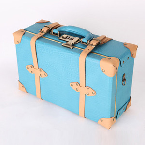 CARRIER VINTAGE S (Sky Blue)