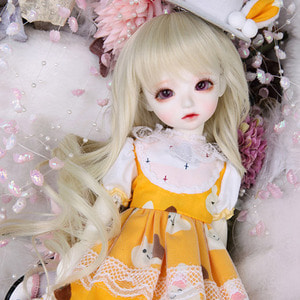 HDF Freesia Set