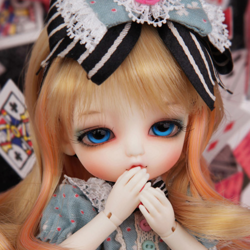 Tiny Delf 20 ALICE - ALICE Limited