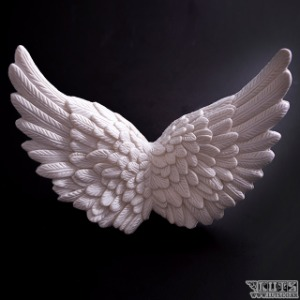 Feather-like Wings L